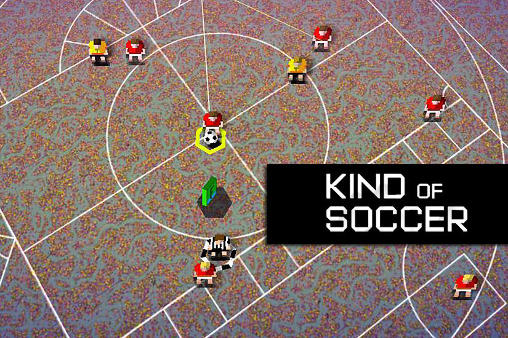 Kind of soccer