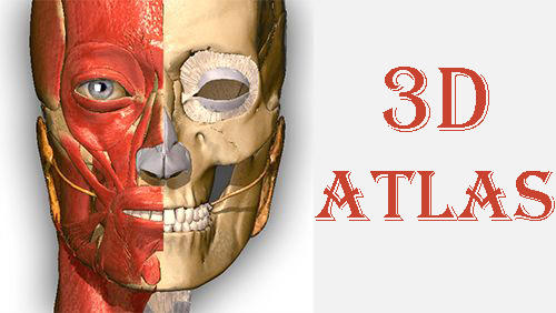 Descargar app Educación Anatomy learning - 3D atlas gratis para celular y tablet Android.