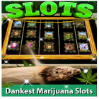 Con la juego Link of hearts para Android, descarga gratis Kush Slots: Marijuana Casino, Lucky Weed Smokers  para celular o tableta.