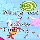 Con la juego Wild hogs para iPod, descarga gratis Ninja cat & candy factory.