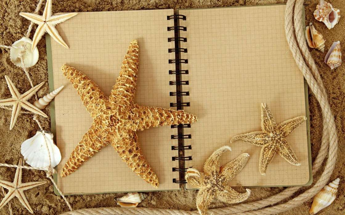 Objects, Starfish