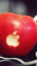Descargar la imagen Apple,Apples,Food,Objects para celular gratis.