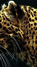 Art,Leopards,Animals