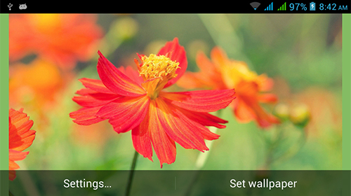 Descargar  Nature HD by Live Wallpapers Ltd. - los fondos gratis de pantalla para Android en el escritorio.