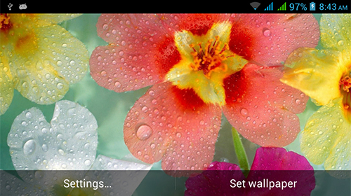 Nature HD by Live Wallpapers Ltd.