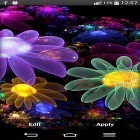Además de los fondos de pantalla animados para Android Sky islands, descarga la apk gratis de los salvapantallas Glowing flowers by My Live Wallpaper.