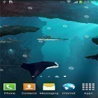 Además de los fondos de pantalla animados para Android Waterfall by Red Stonz, descarga la apk gratis de los salvapantallas Sharks 3D by BlackBird Wallpapers.
