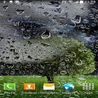 Además de los fondos de pantalla animados para Android Waterfall by Red Stonz, descarga la apk gratis de los salvapantallas Thunderstorm by BlackBird Wallpapers.