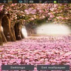 Además de los fondos de pantalla animados para Android HD video live wallpapers, descarga la apk gratis de los salvapantallas Cherry blossom by Creative factory wallpapers.