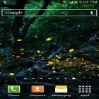 Además de los fondos de pantalla animados para Android Season zen, descarga la apk gratis de los salvapantallas Fireflies by Top live wallpapers hq.
