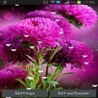 Además de los fondos de pantalla animados para Android Car HD, descarga la apk gratis de los salvapantallas Flowers by Stechsolutions.