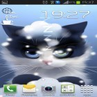Además de los fondos de pantalla animados para Android Sharks 3D by BlackBird Wallpapers, descarga la apk gratis de los salvapantallas Frosty the kitten.