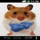 Además de los fondos de pantalla animados para Android Racing car, descarga la apk gratis de los salvapantallas Funny hamster: Cracked screen.