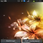 Además de los fondos de pantalla animados para Android Sky islands, descarga la apk gratis de los salvapantallas Glowing flowers by Creative factory wallpapers.