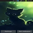 Además de los fondos de pantalla animados para Android HD video live wallpapers, descarga la apk gratis de los salvapantallas Lonely black kitty.