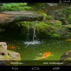 Además de los fondos de pantalla animados para Android Magic crystal, descarga la apk gratis de los salvapantallas Pond with Koi.
