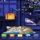 Además de los fondos de pantalla animados para Android Autumn in Paris, descarga la apk gratis de los salvapantallas Sleeping kitten.
