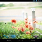 Además de los fondos de pantalla animados para Android Dynamical ripples, descarga la apk gratis de los salvapantallas Summer flowers by Mww apps.